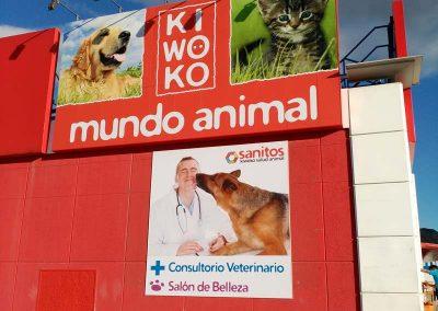 PANELADO EN BANDEJAS ROTULO KIWOKO