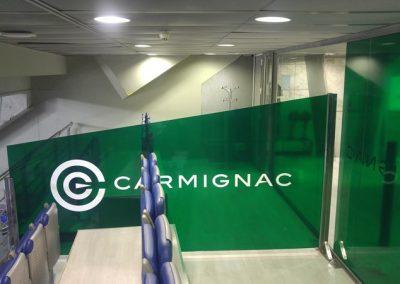 CARMINAG PALACIO DE LOS DEPORTES