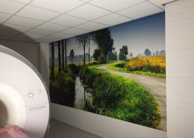 Foto mural en vinilo impreso especial pared y laminado polimerico 2 Foto murales